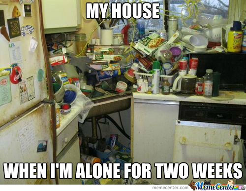 Not Really Mine, Just A Dirty House