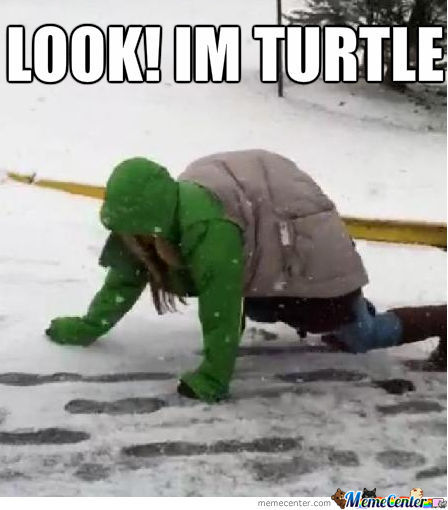Not Sure If Cosplaying A Turtle, Or Just Slipped On The Road ...