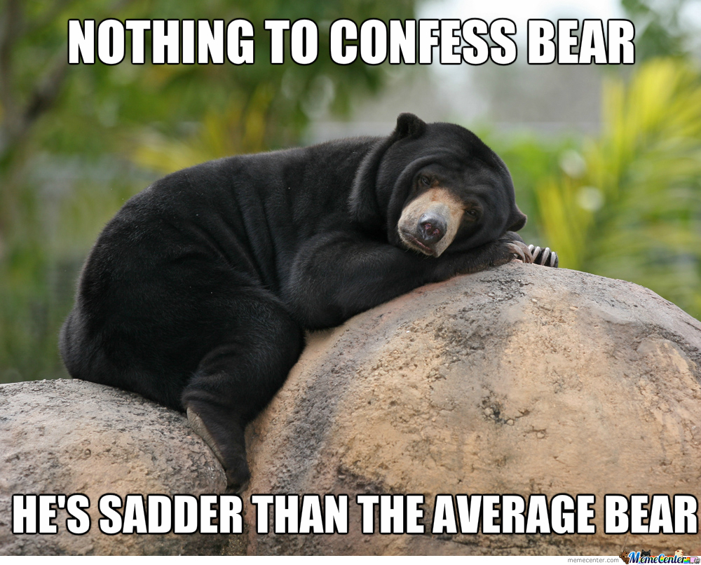 Nothing To Confess Bear