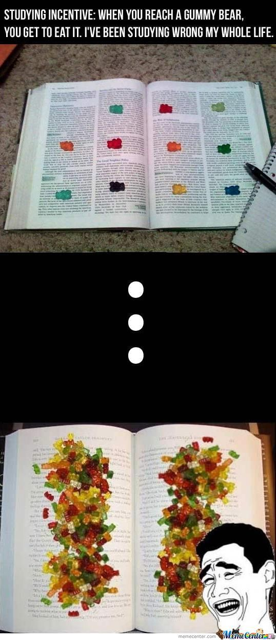 Now To Study How To Lose Weight....