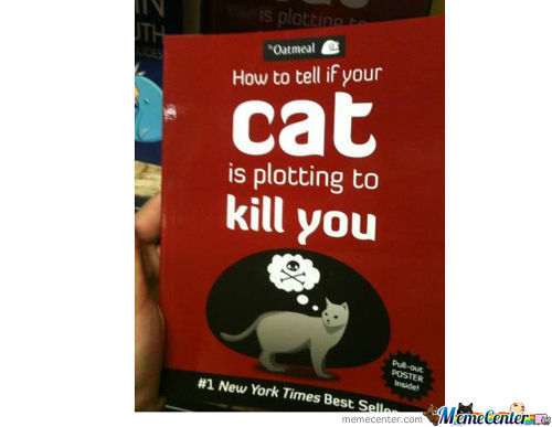 Ny Times Best Seller?