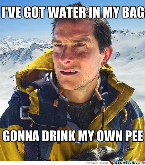 Obvious Bear Grylls