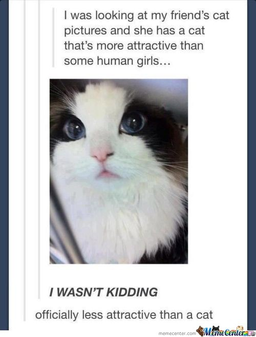 Officially Less Attractive Than A Cat