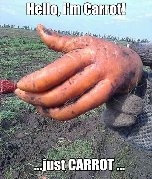 Oh! Carrot...