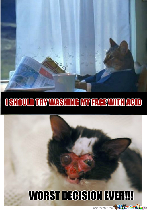 Oh Cat Why?