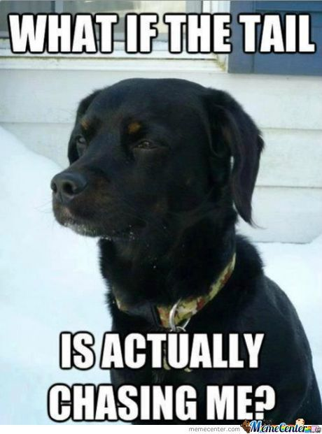 Oh Conspiracy Dog