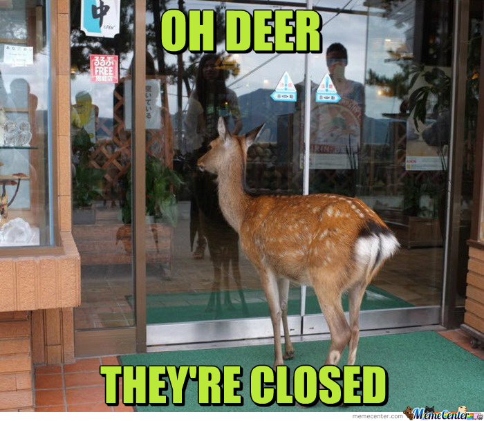 Oh Deer They're Closed