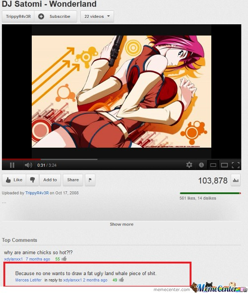 Oh Youtube, Your Comments Never Fail To Amuse Me