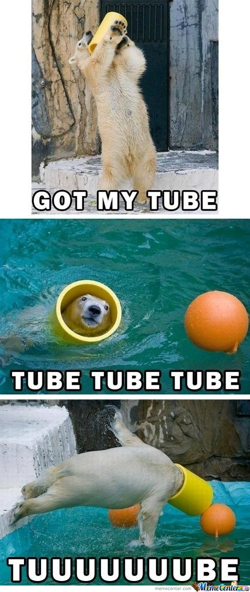 One Bear And His Tube