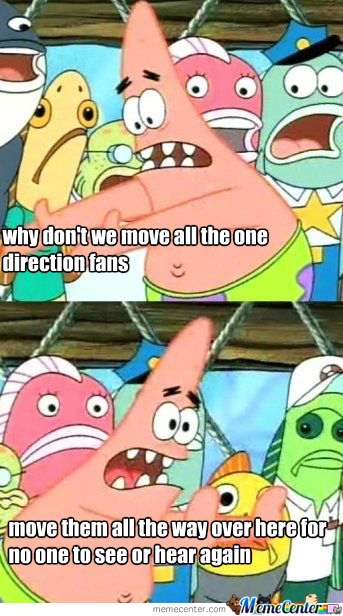 One Direction Fans