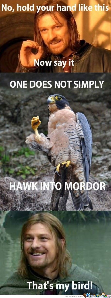 One Does Simply Hawk Into Mordor