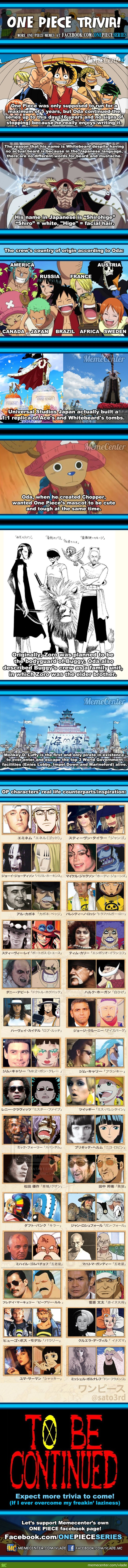 One Piece Fun Facts!