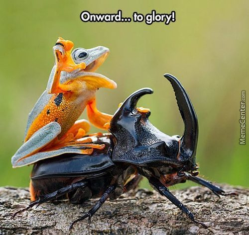 Onward... To Glory!!!!