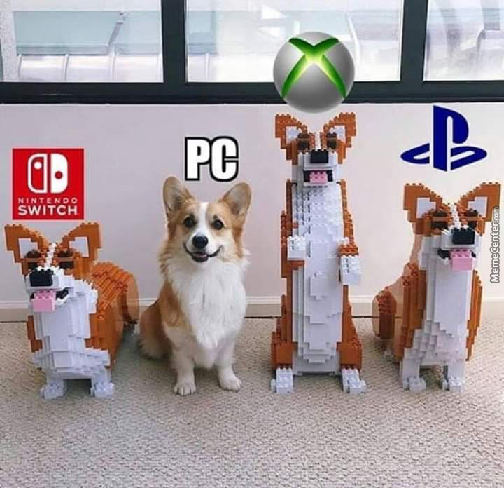 Pc Dogo Race