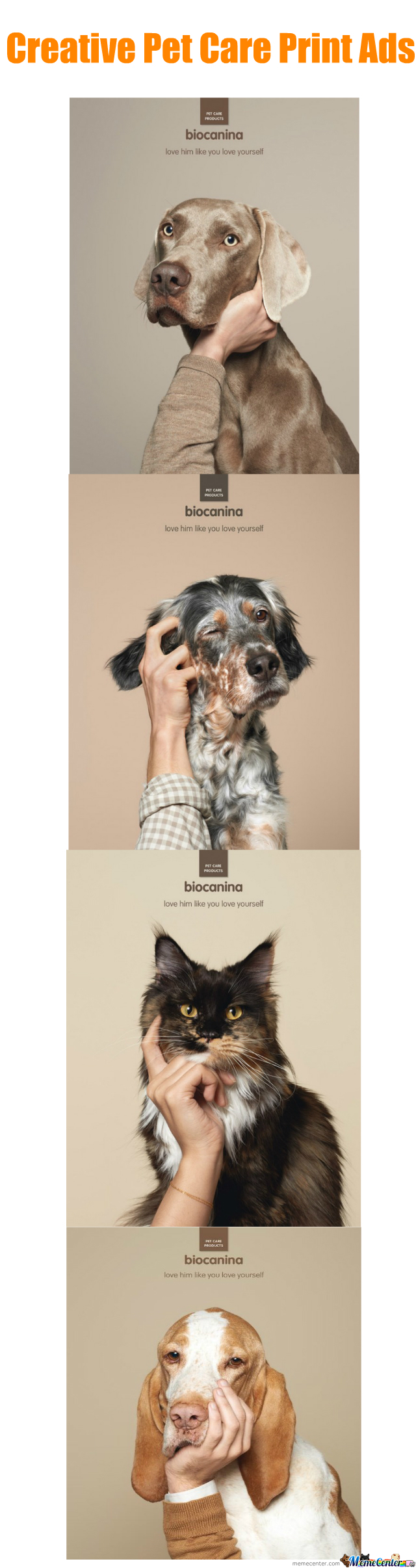Pet Care Ads