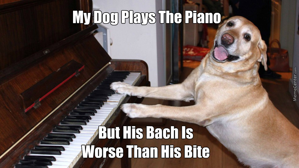 Image result for piano memes