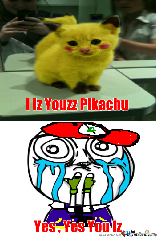 pikachu kitten by the7amo0od meme center