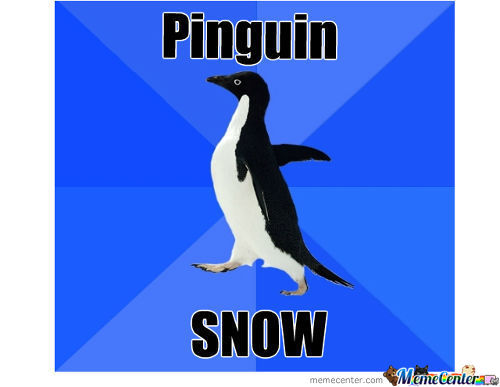 Pinguin Snow