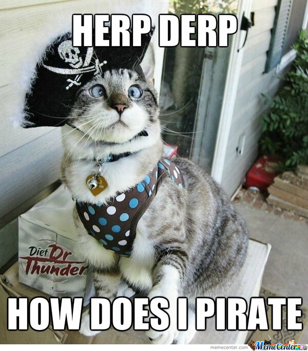 pirate-kitteh_o_1988469.jpg
