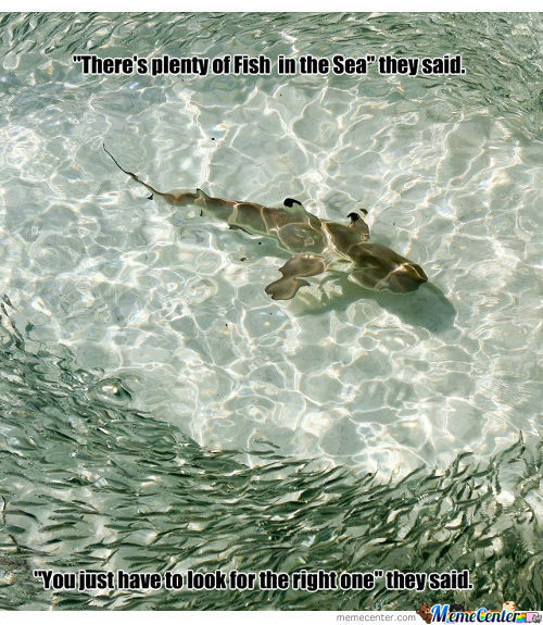 Sea memes best collection of funny sea pictures for Plenty of fish in the sea