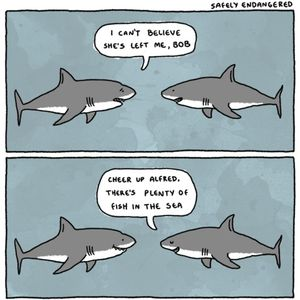 plenty of fish in the sea by dburns101 meme center