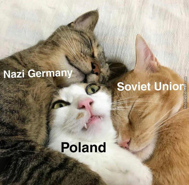 Poland Don't Feel To Comfortable