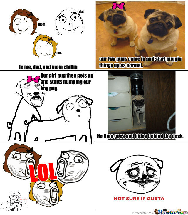 Poor Pug Got Raped.