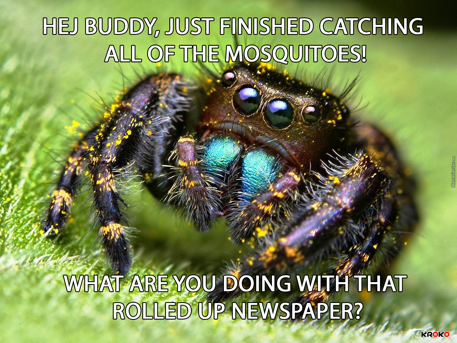 Poor Spider Now Kill It With Fire By Kroko Meme Center