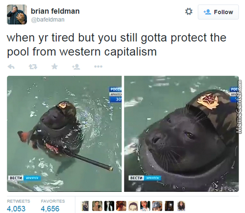 Protect The Pool For Glorious Comrade Stalin