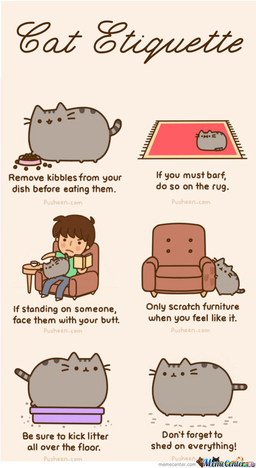 pusheen s cat etiquette_o_435786 pusheen´s cat etiquette by mandala meme center