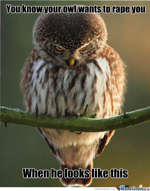 Rape Face Now For Owls
