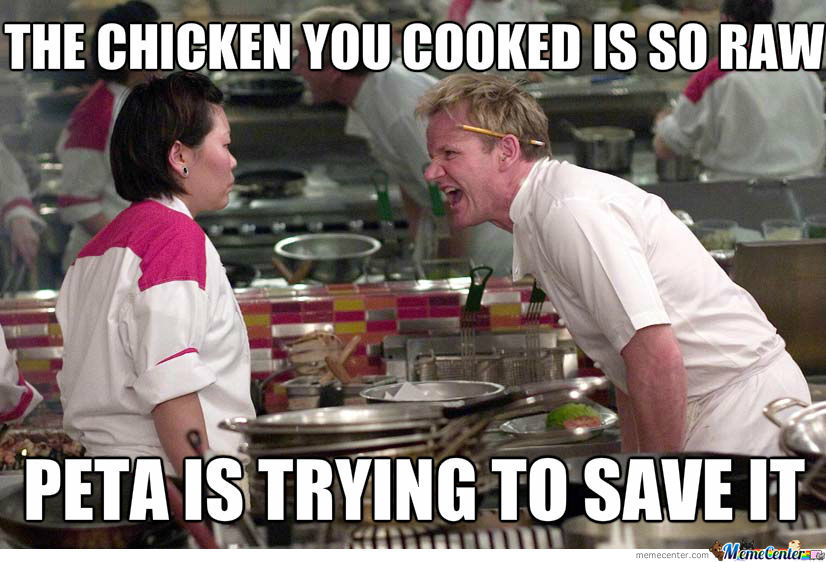 raw chicken_o_1201504 raw memes best collection of funny raw pictures