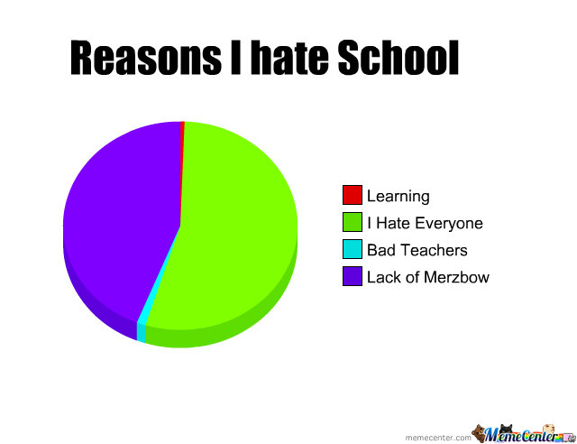 Reasons I Hate School
