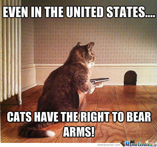 right to bear arms_o_1232686 right to bear arms by andrewlye meme center,The Right To Bear Arms Meme