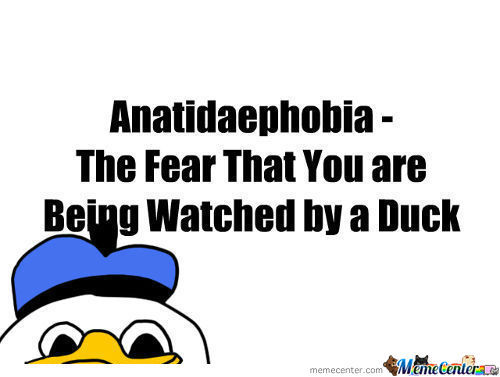 [RMX] Anatidaephobia - The Fear That You Are Being Watched By A Duck