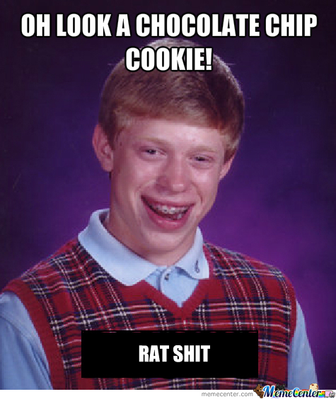 [RMX] Bad Luck Brian Finds A Chocolate Chip Cookie