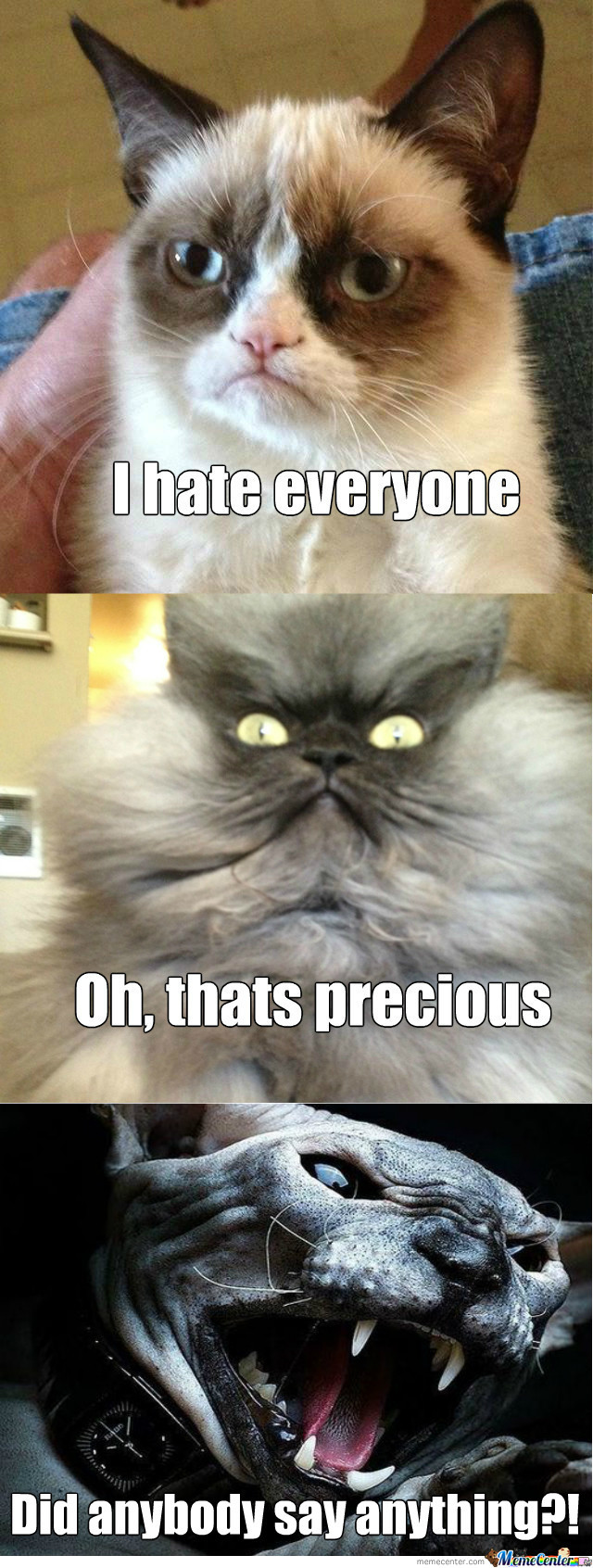 [RMX] Colonel Meow Is Not Amused