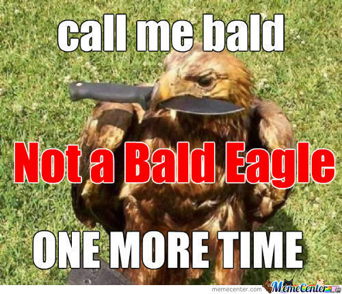 [RMX] Eagles Are Self Conscious
