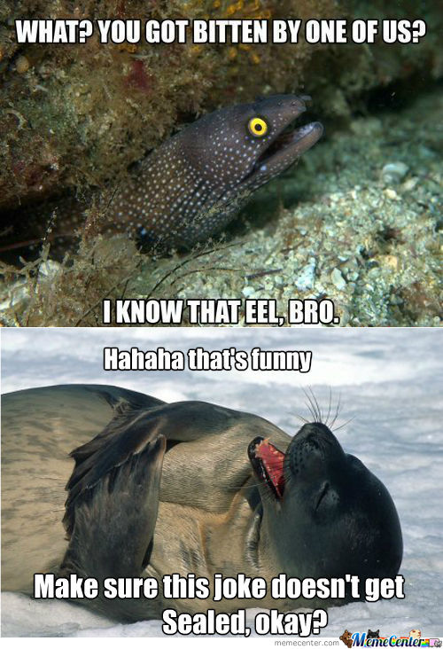 Eel Memes Best Collection Of Funny Eel Pictures