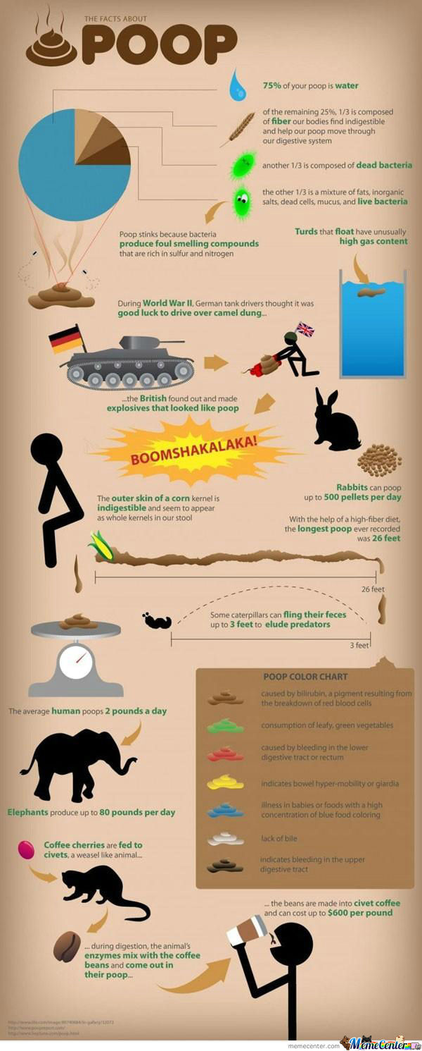 [RMX] Facts about poop
