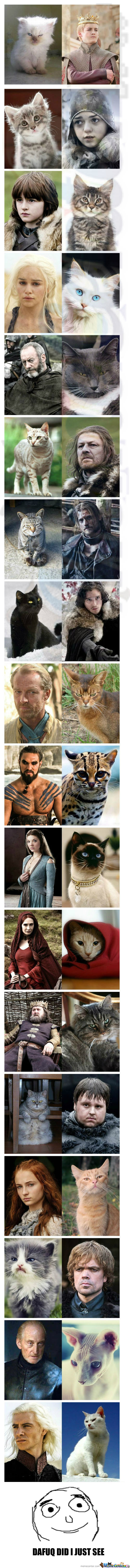 [RMX] Game Of Cats