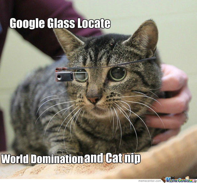 [RMX] Google Glass For Cats