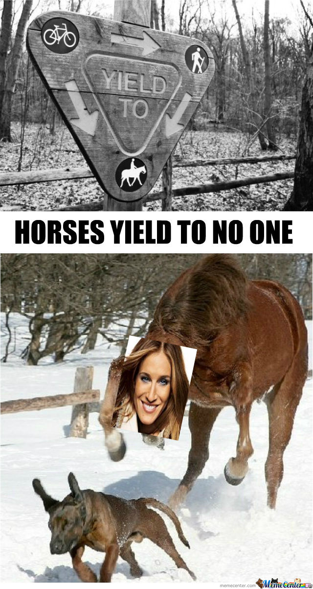 [RMX] Horses Yield To No One!