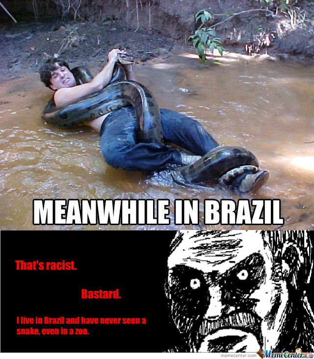[RMX] Meanwhile In Brasil
