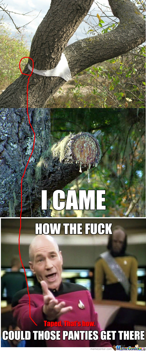 [RMX] [RMX] I See What You Did There Tree