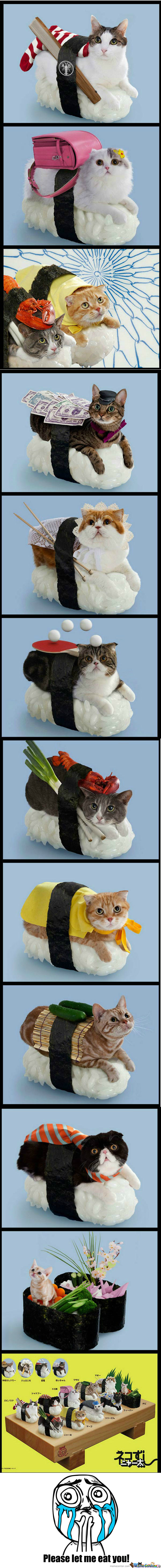 Rmx Sushi Cats Compilation By Bluefun Meme Center