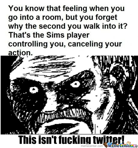 [RMX] That's The Sims Player Controlling You, Cancelling Your Action.