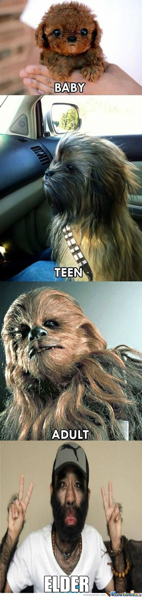 [RMX] The Life Of Chewbacca