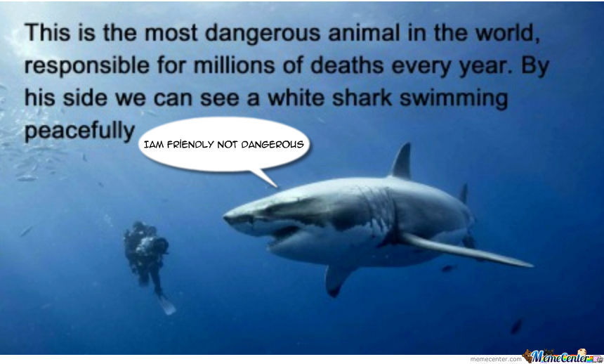 [RMX] The Most Dangerous Animal On The Planet!