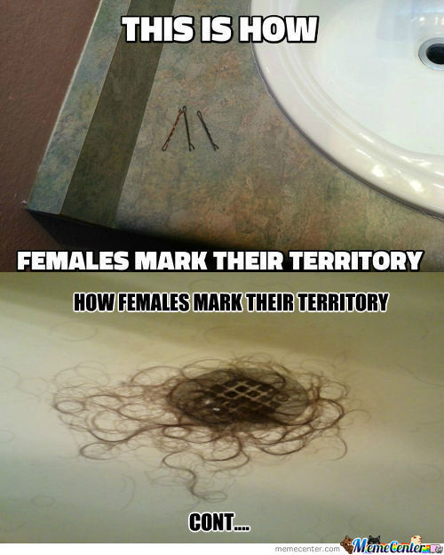 [RMX] This Is How Females Mark Their Territory
